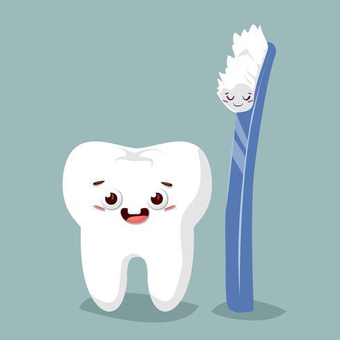 b5e78f0f4 Dentes bonitos dos desenhos animados com escova de dentes. Ilustração  vetorial plana