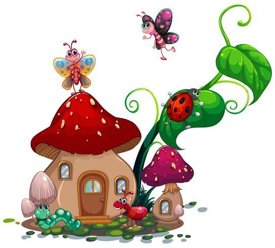 Casa de cogumelo com muitos insetos