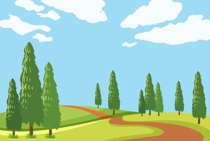 Una bellissima strada naturale