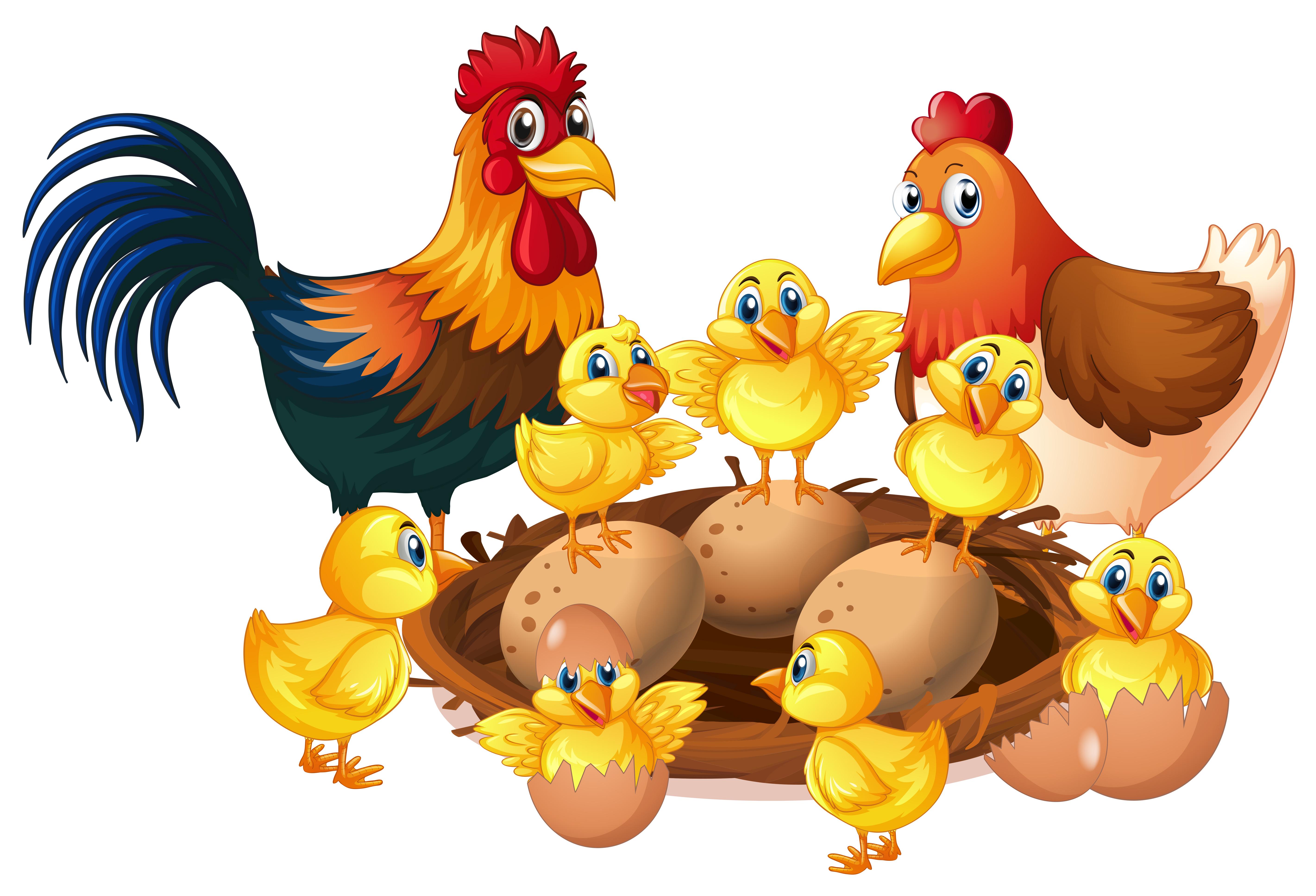 Картинки курица с цыплятами и петухом для детей