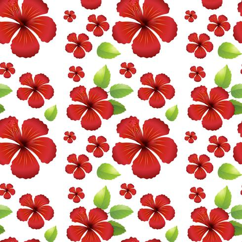 Seamless background design with red hibicus flowers vector