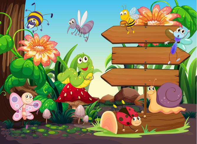 Sinais de madeira e insetos no jardim