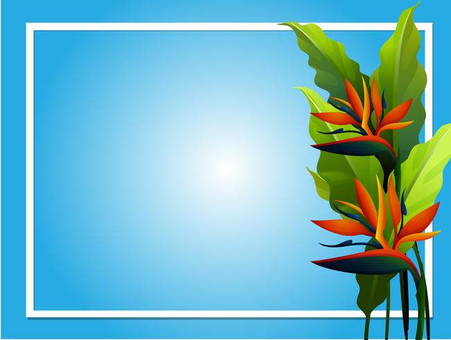Ramdesign med fågel av paradisblomma