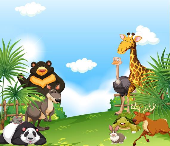Achtergrondscène met wilde dieren op het gebied