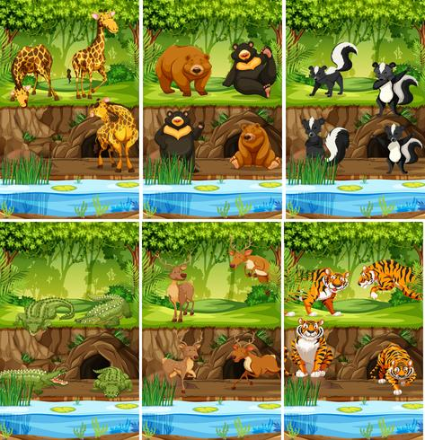 Stor uppsättning djur i djungeln