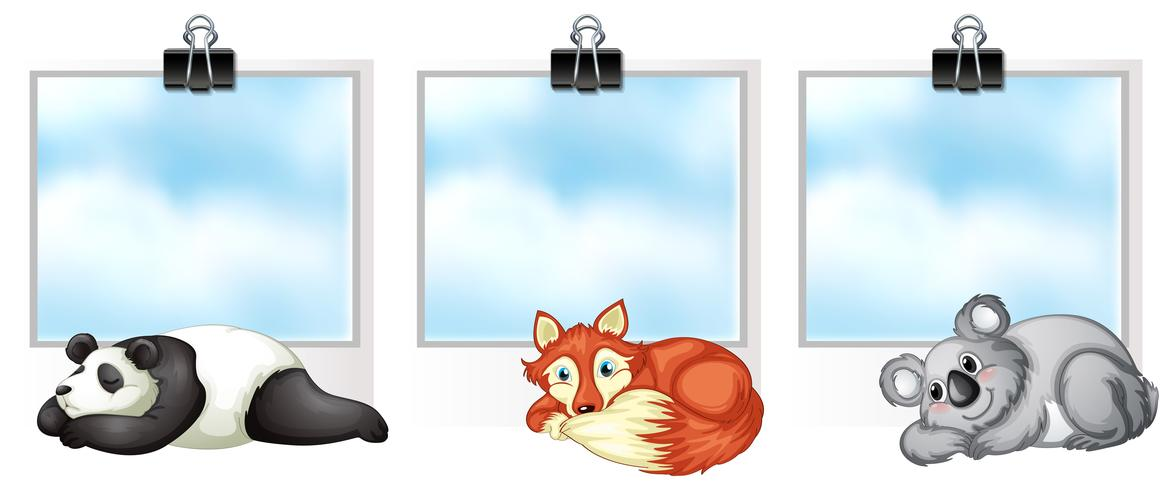 Tre ramar med vilda djur