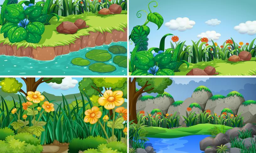 Four scenes with flowers in garden
