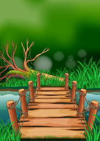Scen med träbro över floden