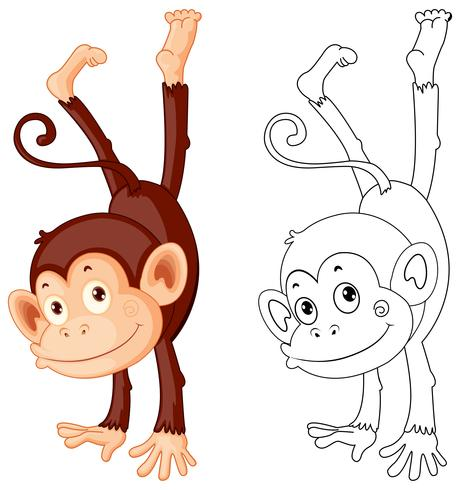 Animal doodle outline for cute monkey