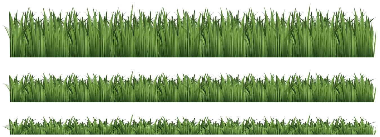 Naadloze achtergrond voor groen gras