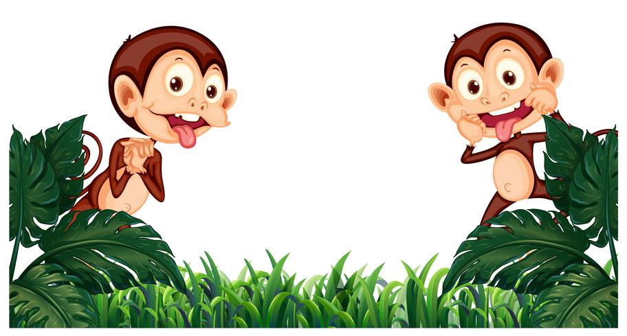 Background design with two monkeys in garden