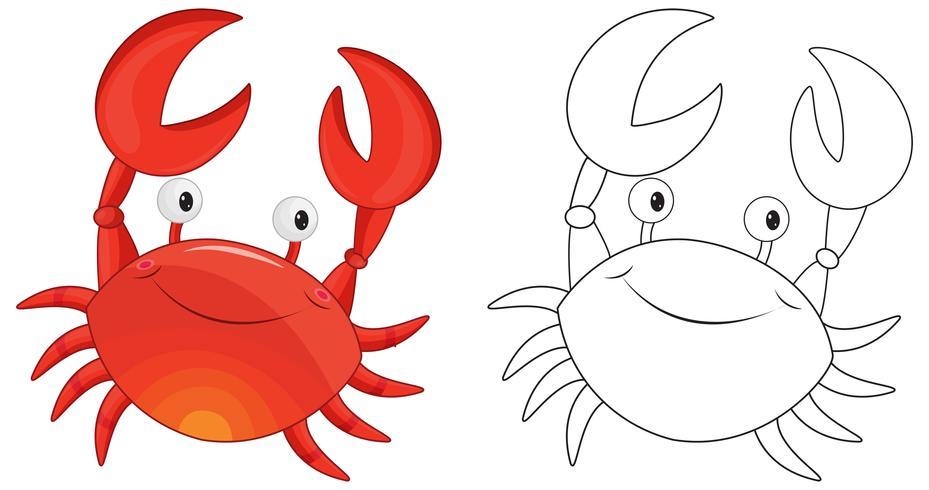 Contour des animaux pour le crabe
