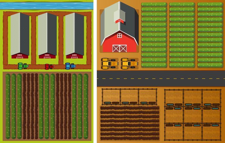 Bauernhofansicht von oben mit Gemüse und Scheunen
