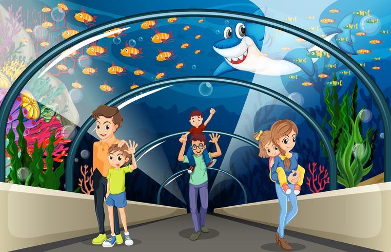 Mensen kijken naar vis in het aquarium