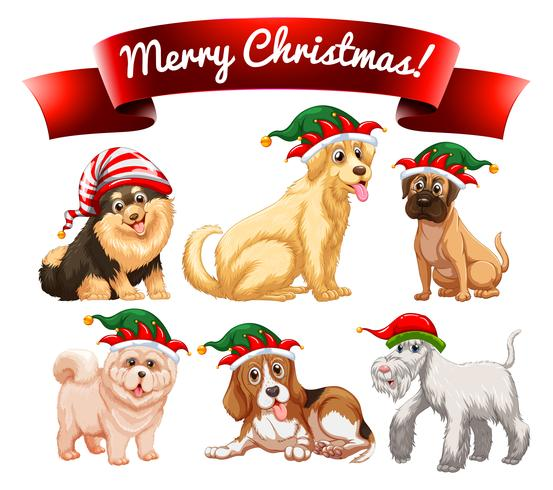 Christmas theme with many dogs