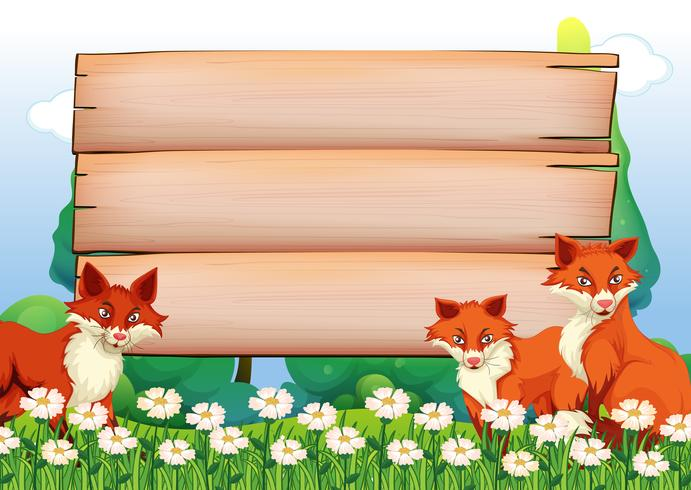Wooden signs and foxes in garden