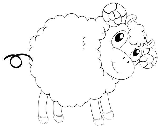 Profilo animale per pecore carine
