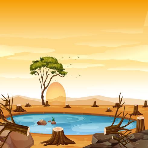 Scène met vijver- en boomstronkbomen