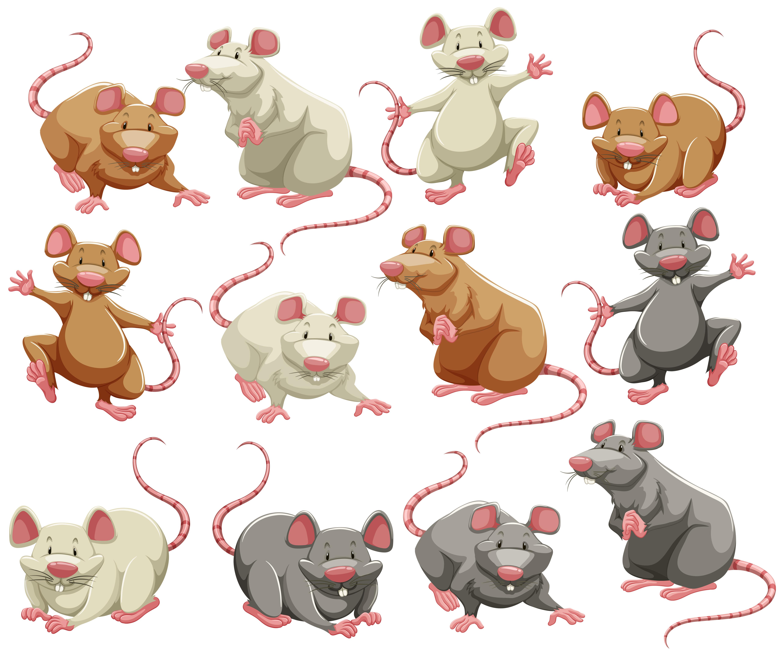老鼠插圖 免費下載 | 天天瘋後製