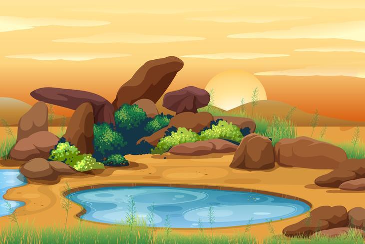 Scène avec waterhole au coucher du soleil