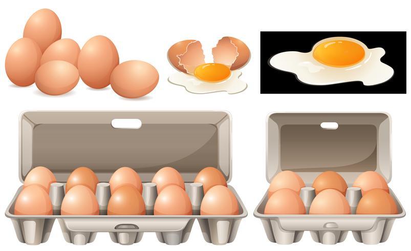 Ovos crus em pacotes diferentes