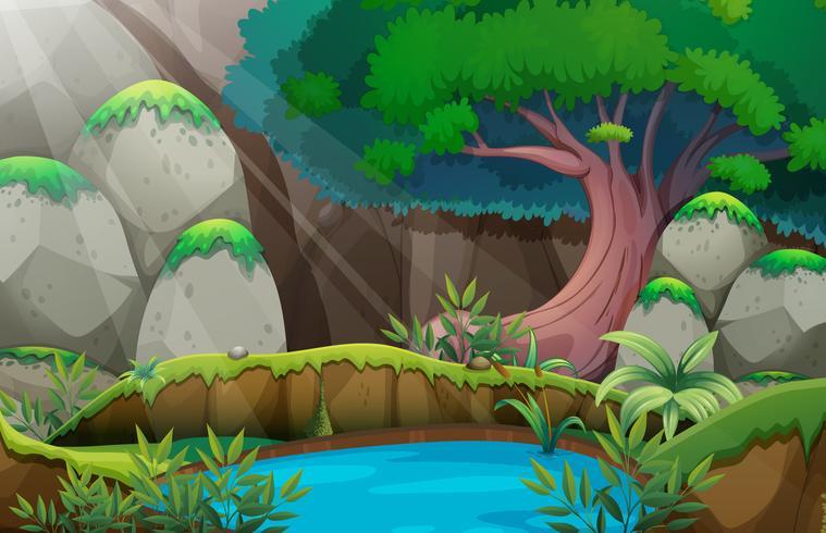 Forest scene with waterhole
