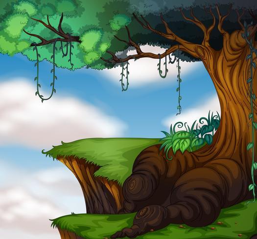 Stort träd på klippan