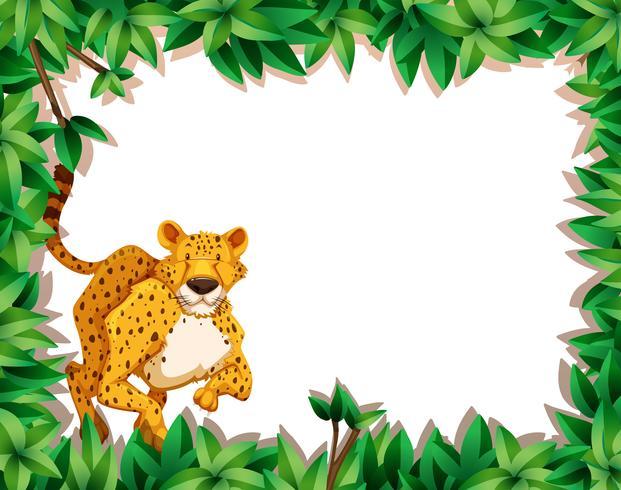 Cheetah i naturen scen