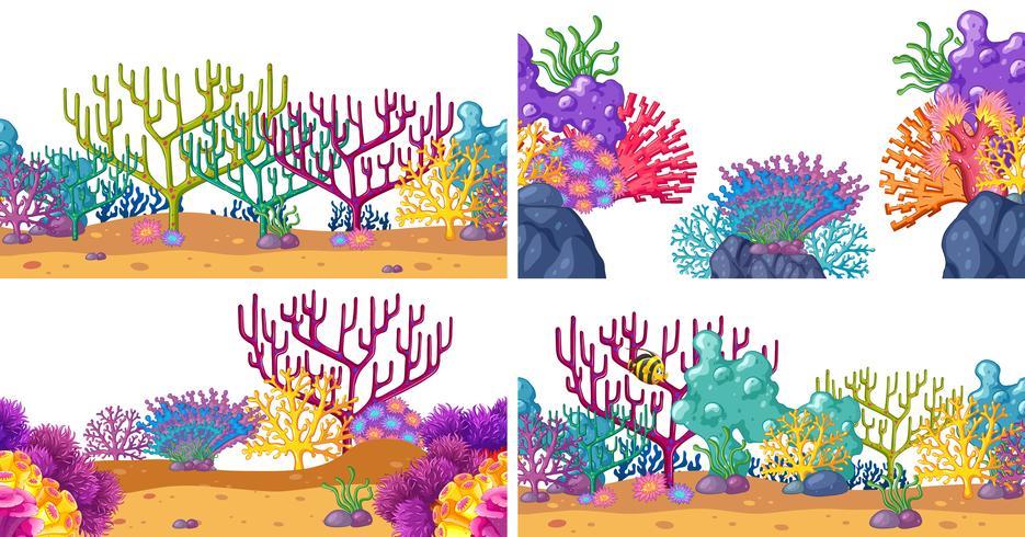 Sats av koraller i undervatten
