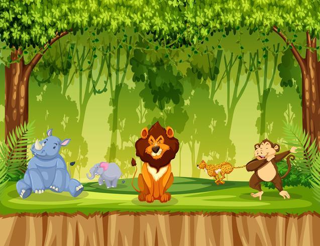 Djur i djungelscenen