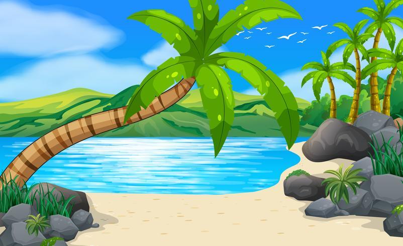 Strandscène met kokospalmen op het land