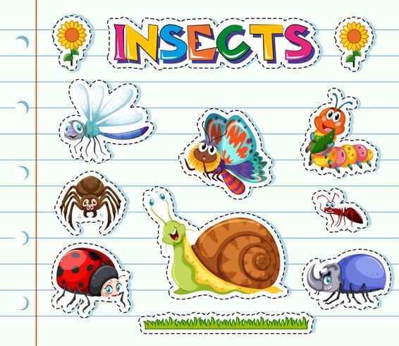 Sticker design with different types of insects vector