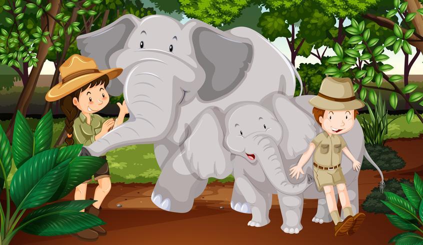 Två elefanter och barn i skogen