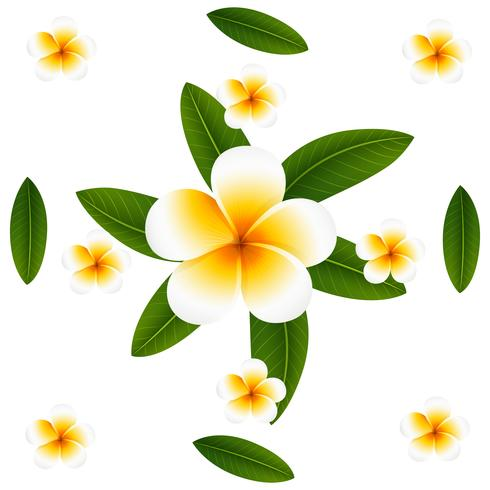 Seamless background design with plumeria and leaves vector