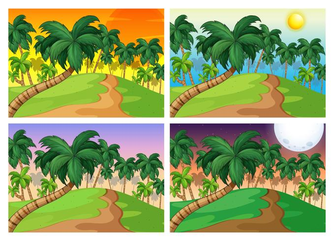 Palmbomen op de heuvels op vier verschillende tijden