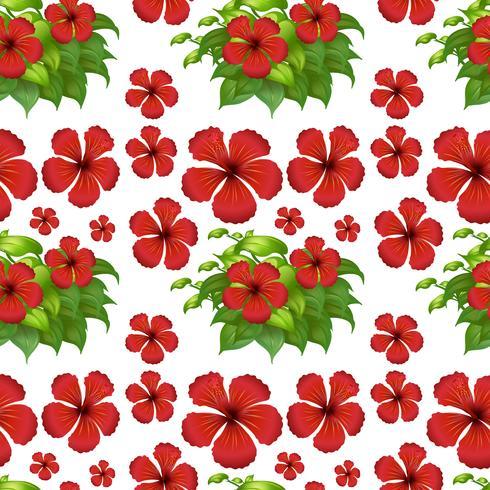 Fundo sem costura com flores de hibisco vermelho