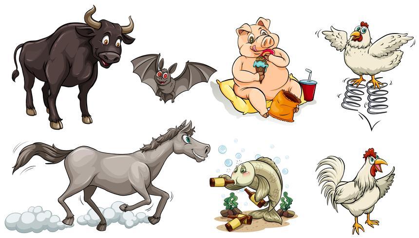 Diferentes tipos de animais fazendo coisas diferentes