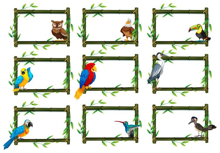 Satz Vögel in Naturszenen