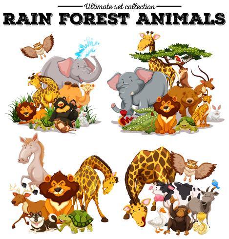Olika slags regnskogsdjur vektor