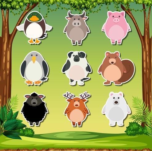 Conjunto de pegatinas de animales.