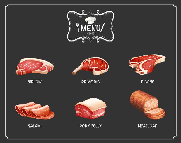 Different kind of meat on menu vector