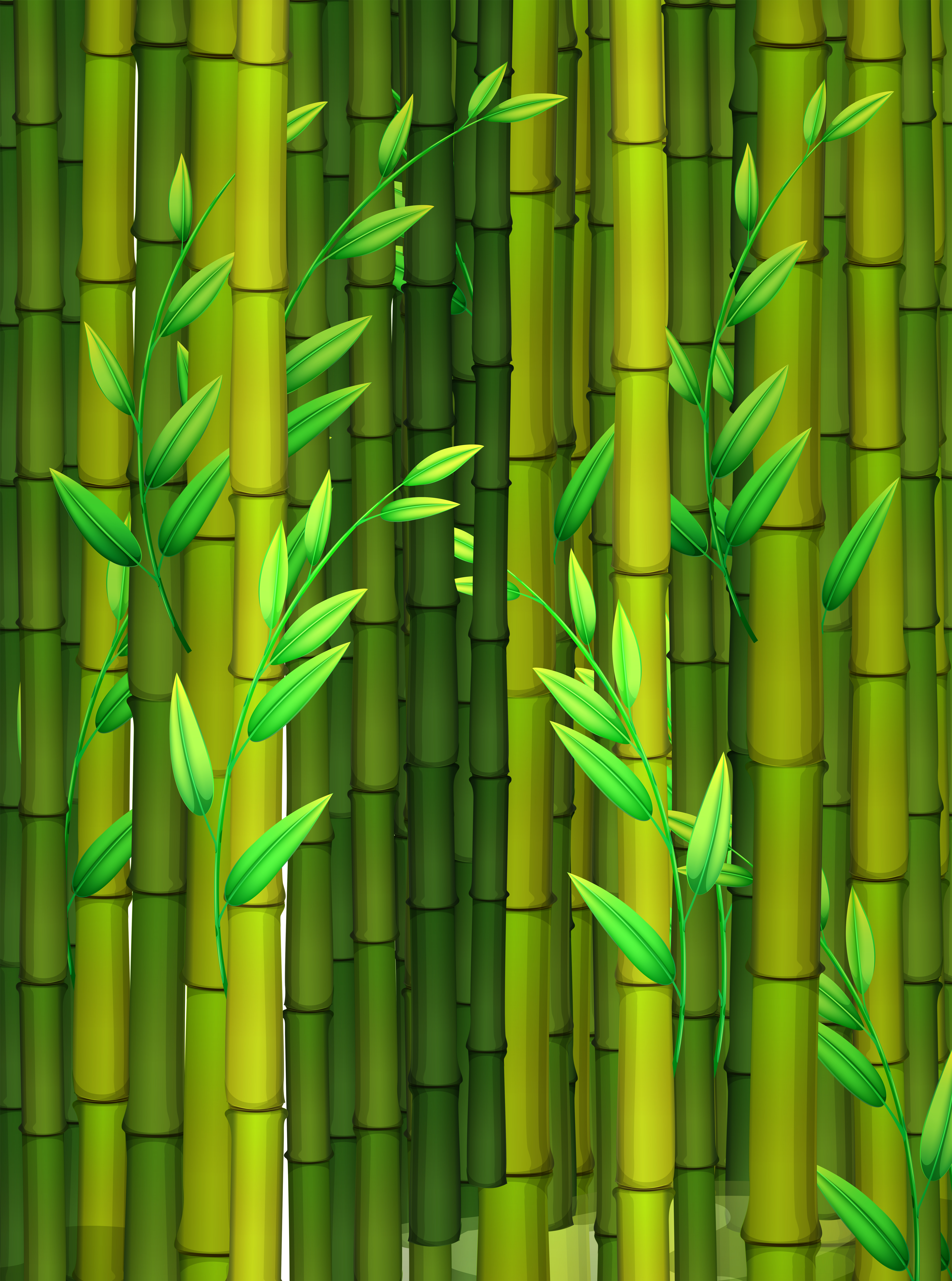Panda In Bamboo Forest
