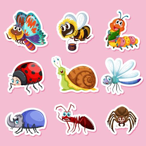 Sticker designs for different bugs vector