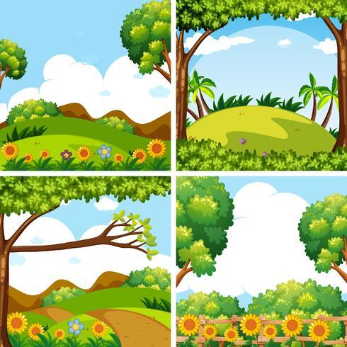 Vier natuurtaferelen met bomen en velden
