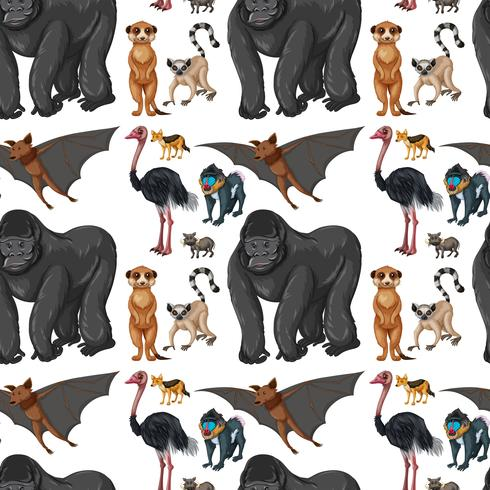 Fondo transparente con animales salvajes.