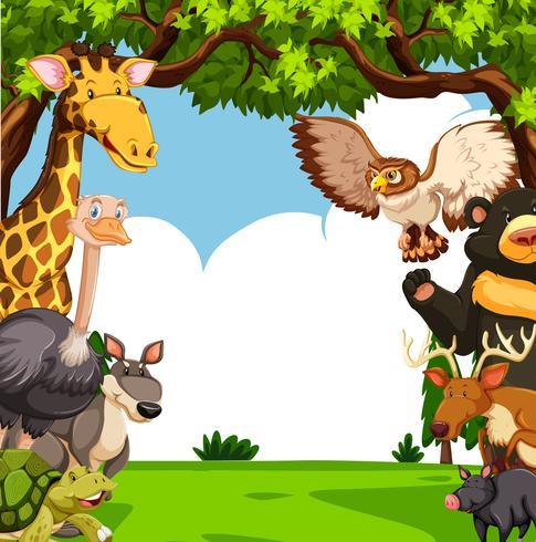 Scène met veel dieren in het bos