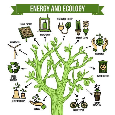 Grön energi ekologisk infografisk layout affisch vektor