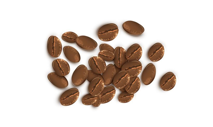 Realistic coffee beans, vector illustration