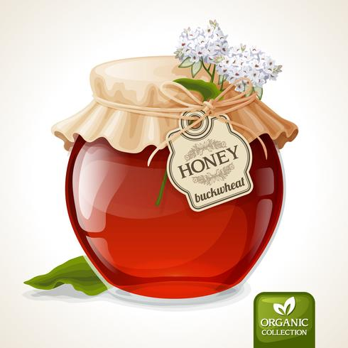 Buckwheat honey jar vector