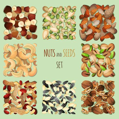 Set de nueces y semillas